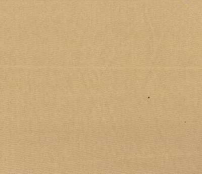 C0338 CLEARANCE / BARGAIN FABRIC - Product Image